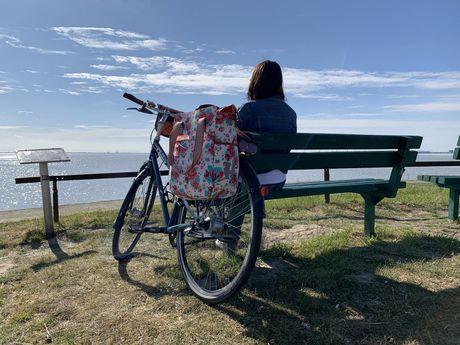 Tagestour auf der Dollard Route - Stadt und Land